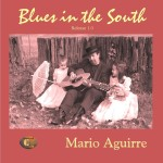Blues in the South cover